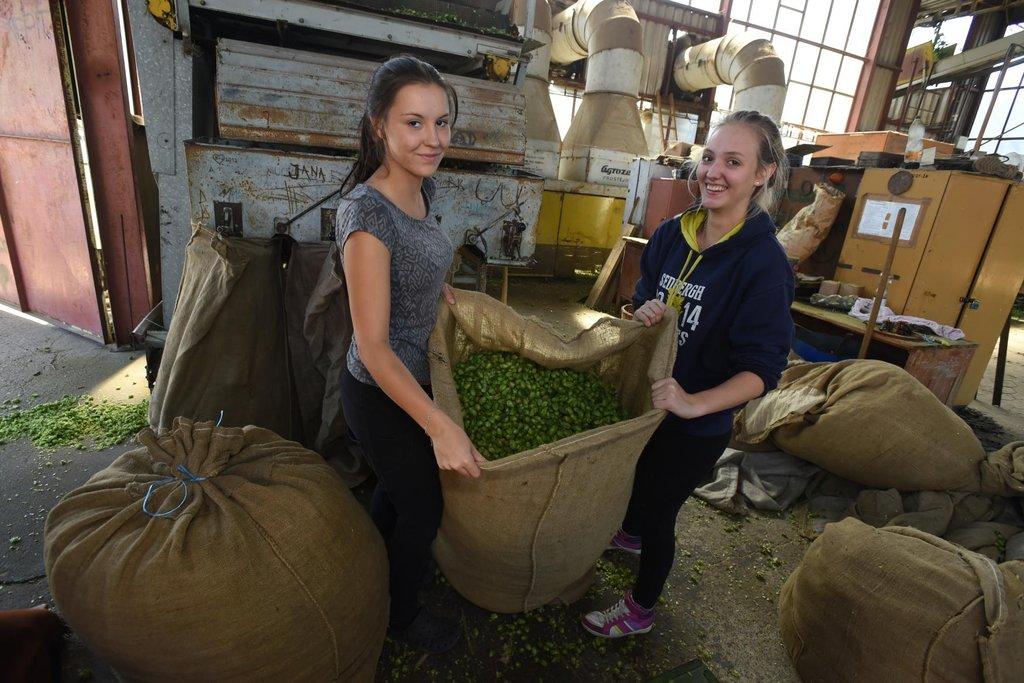 Tyto dívky práce s přírodní surovinou zjevně těší