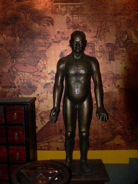 akupunktura, čínská medicína, Čína, alternativní medicína, historie