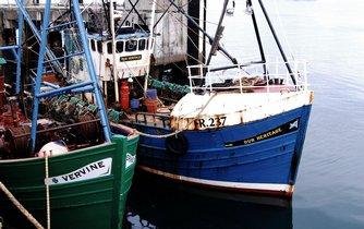 Rybolov - ilustrační foto