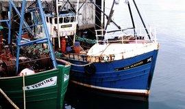 Pobrexitová jednání mohou zkomplikovat sporné body: banky, zemědělství či rybolov