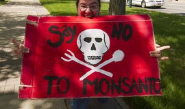 Demonstrace proti společnosti Monsanto