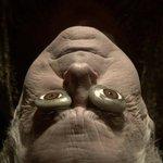 Jon Arryn - mrtev