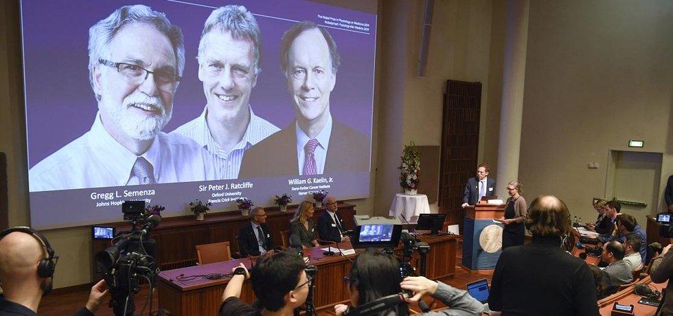 Letošní Nobelovu cenu za fyziologii a lékařství získali Američané William Kaelin a Gregg Semenza a Brit Peter Ratcliffe