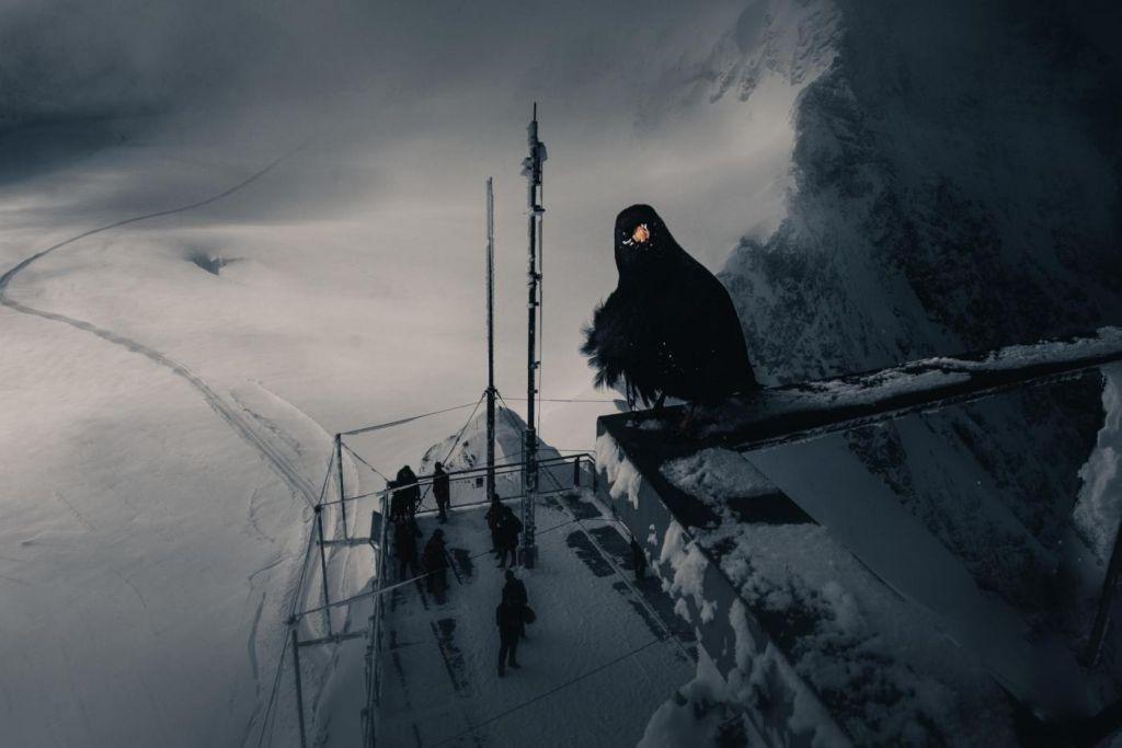 Dopady skleníkových plynů na ekosystémy ledovců sledují ve Švýcarsku.
