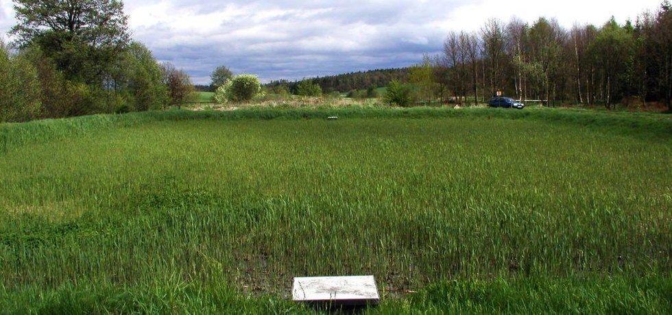 Kořenová čistírna odpadních vod Dekonty v Kotenčicích, ilustrační foto