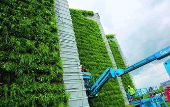 Zelená fasáda, ilustrační foto