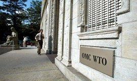 Zákon džungle. Rozhodci WTO mohou být další obětí Trumpovy obchodní války