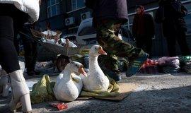 Pouliční prodej, ilustrační foto