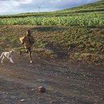 Běžci od pánaboha. Pozdvižení jsme vyvolali i v Lesothu