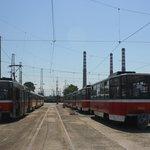 V Blharsku už jezdí dvě desítky vozů