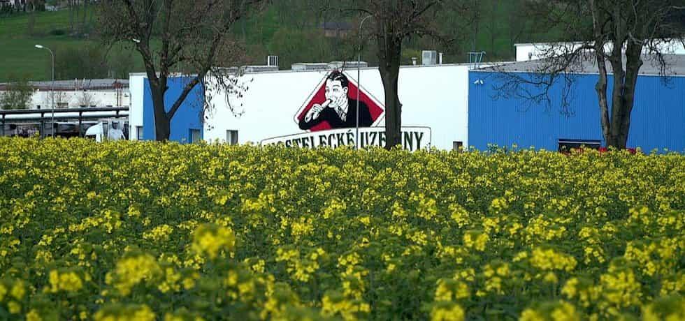 Film Selský rozum nabízí mimo jiné podrobné vysvětlení toho, proč na českých polích roste ve výrazném podílu řepka