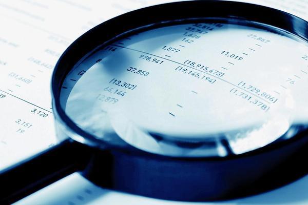 lupa, audit, hospodaření
