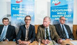 Lídři AfD (uprostřed Alice Weidelová a Alexander Gauland)