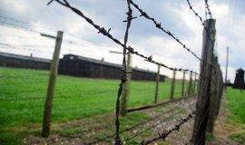 Netflix rozzlobil polského premiéra Morawieckiho. Udělal chybu v dokumentu o holocaustu