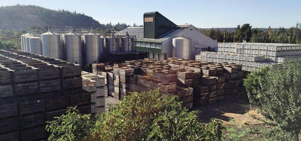 Úspěch má v regionu i likérka Rudolf Jelínek, která působí ve středním Chile