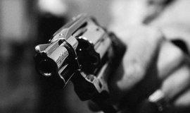 Lidé mají podle španělských výzkumníků vraždění tak trochu v povaze.