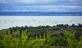 Jachtařský závod na Balatonu