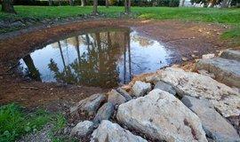 Česko nevyschne, lidé ale musí udržet vodu v krajině. Potřebujeme mokřady a nádrže, tvrdí analytik