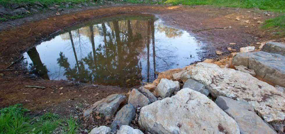 Rybník v parku Michalov, ilustrační foto