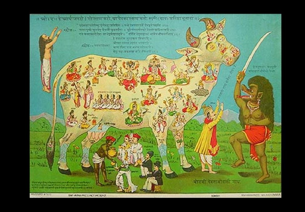 Leták, který protestuje proti muslimské tradici jíst hovězí maso. Z roku 1912.