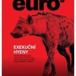 Euro 43