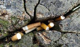 Nedopalky extrémně zatěžují města i přírodu. Úklid mají zaplatit tabákové koncerny