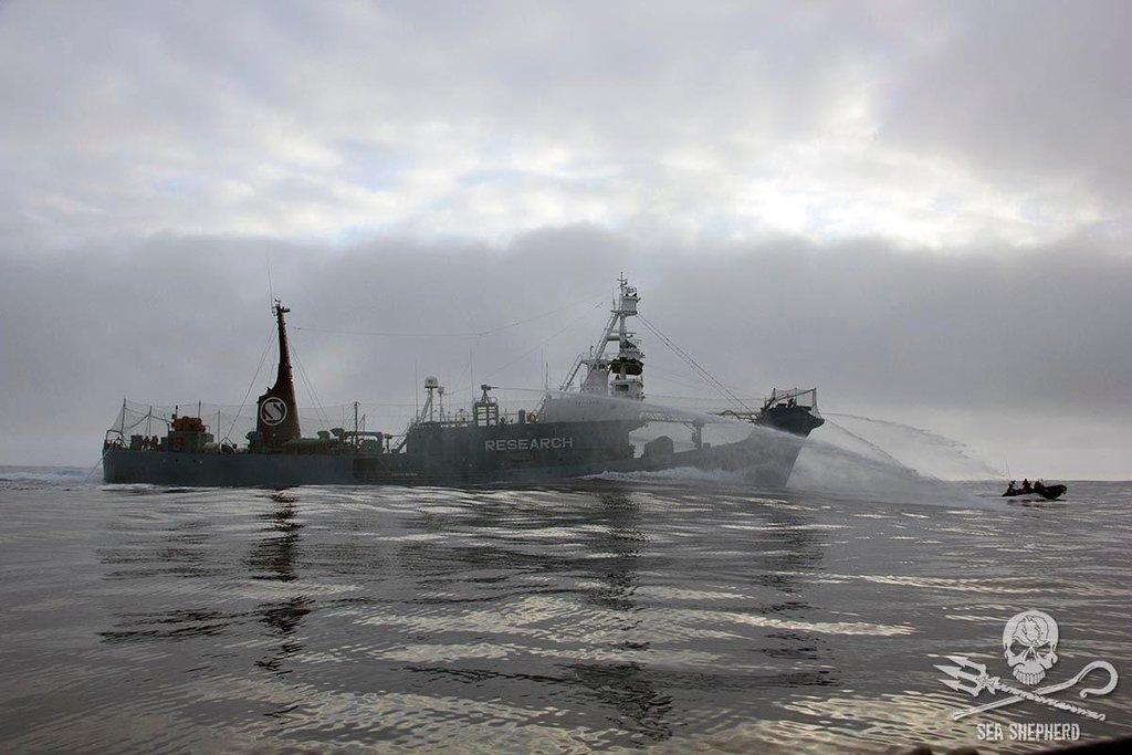 Velrybáři bránící se vodním dělem