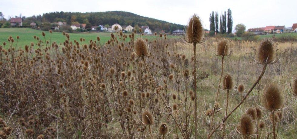Nárokované parcely mají v katastru většinou označení ostatní plocha či zahrada, zastavěná je pouze malá část.