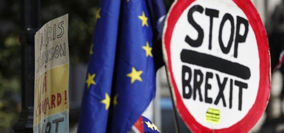 Protest proti brexitu, ilustrační foto