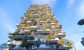 Třikrát víc než Praha. Milán vysadí tři miliony stromů