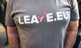Leave.EU, ilustrační foto