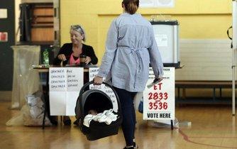 Irské referendum o zrušení ústavního zákazu potratů v zemi