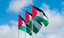 Palestinské vlajky, ilustrační foto.