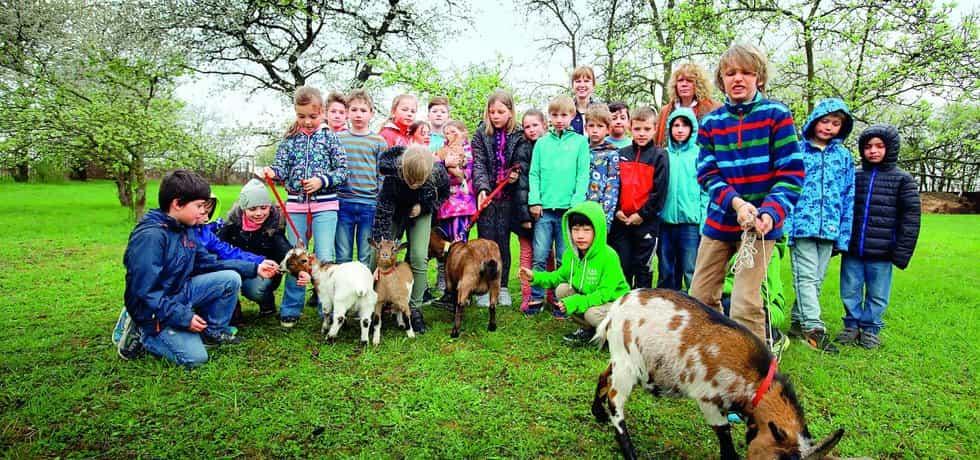 Jde to i ve stáním. Děti ve veřejné škole ve Slivenci chovají na zahradě kozy.