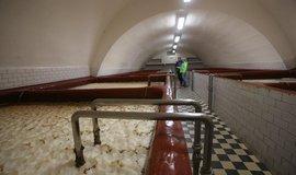 Výroba piva - ilustrační foto