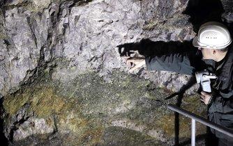 Zájem australské společnosti European Metals Holdings (EMH) o těžbu lithia u Cínovce na Teplicku v Krušných horách nadále trvá