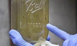 Mikroplasty, ilustrační foto