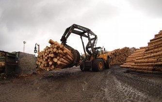 Dřevo - ilustrační foto