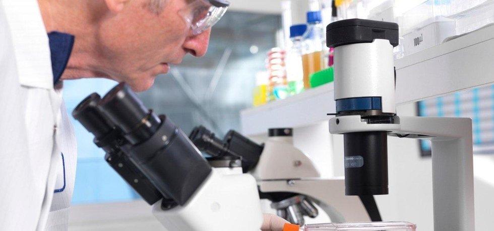 Výzkum kmenových buněk.