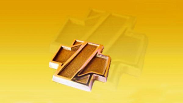 Zlatý záchranářský kříž,
