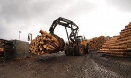 Přebytek dřeva rozložil trh. Ceny dřevostaveb a nábytku ale neklesají