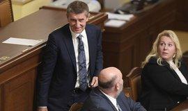 Vláda Andreje Babiše ustála hlasování o důvěře
