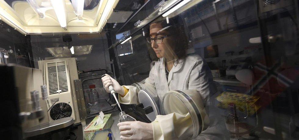 Výzkum léčby rakoviny