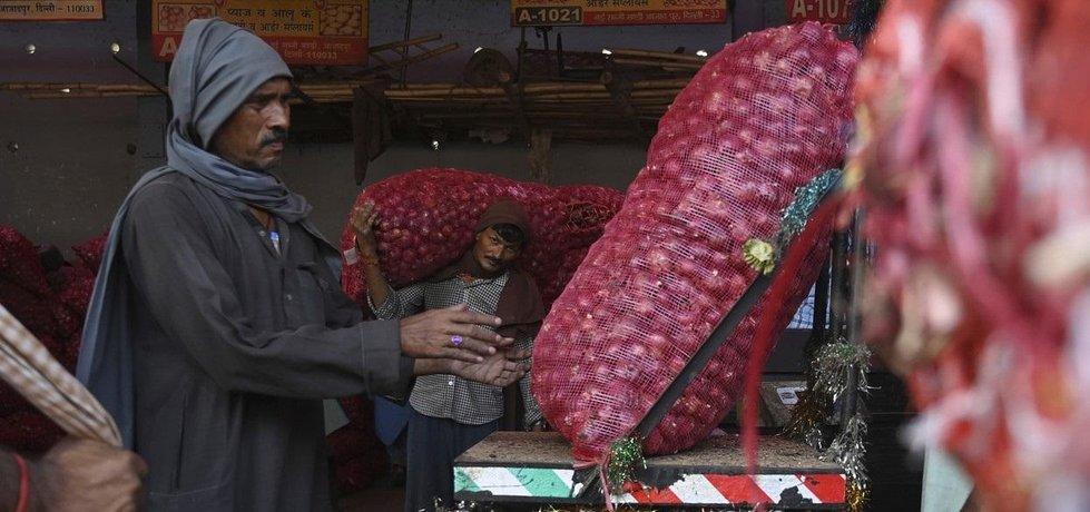 Prodej cibule v Indii, ilustrační foto