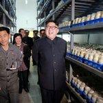 Kim si prohlíží úrodu na farmě na pěstování hub v Pchjongjangu.