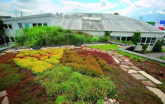 Zelená střecha budovy, ilustrační foto