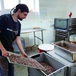 Čokoládu tvoří kvalitní kakaové boby, sušená třtinová šťáva a nic víc
