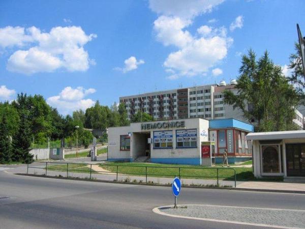 nemocnice Česká Lípa, Českolipská nemocnice,