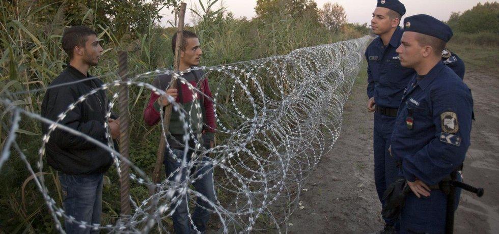 Maďarští běženci se přes hraniční plot baví s běženci na srbské straně hranice