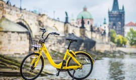 Žluté kolo čínské společnosti Ofo před Karlovým mostem